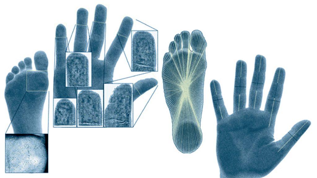 HandFootBio